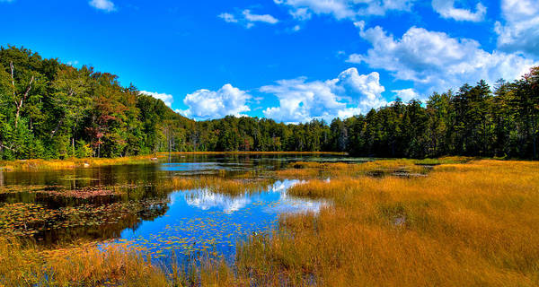Photograph - The Beautiful Fly Pond - Old Forge Ny by David Patterson