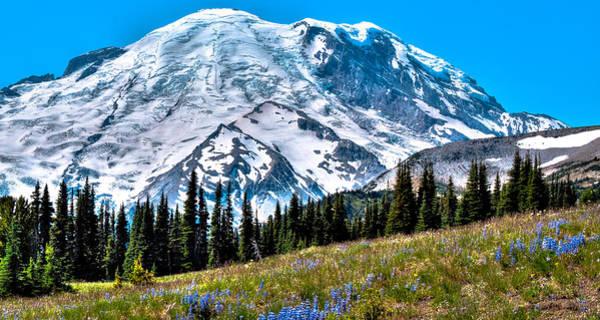 Photograph - The Beautiful Mount Rainier At Sunrise Park by David Patterson
