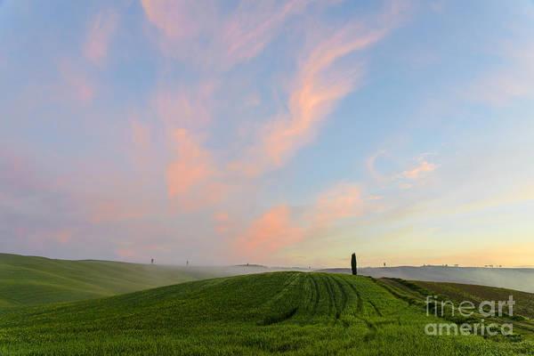 Wall Art - Photograph - The Beautiful Tuscany by Yuri San