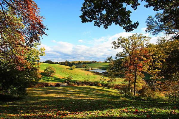 Photograph - The Beauty Of Fall by Trina  Ansel