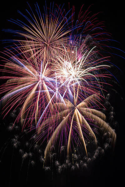 Fireworks Display Wall Art - Photograph - The Beauty Of Fireworks by Garry Gay