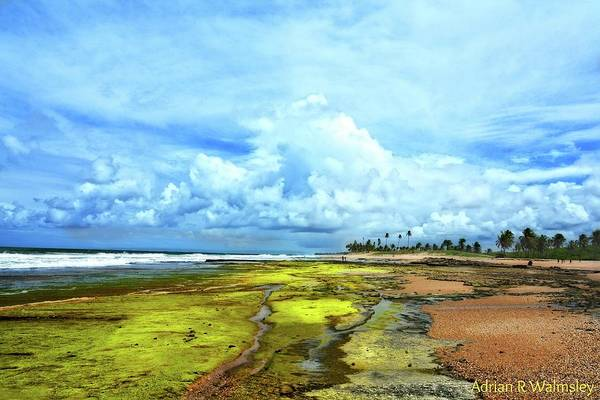 Photograph - The Beauty Of Low Tide by Adrian R Walmsley
