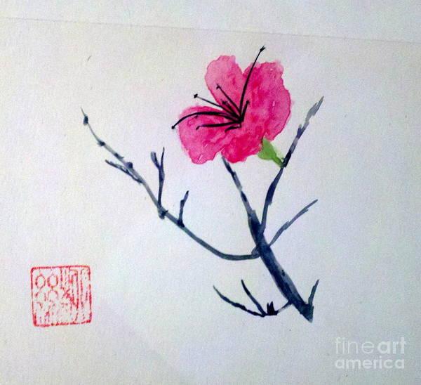 The Beauty Of Solitude Art Print