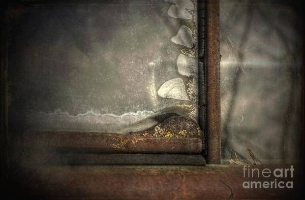 Wall Art - Photograph - The Better Half Of My Old Dodge by The Stone Age