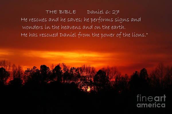 Photograph - The Bibles Says.... Daniel 6 Vs 27 Niv by Reid Callaway