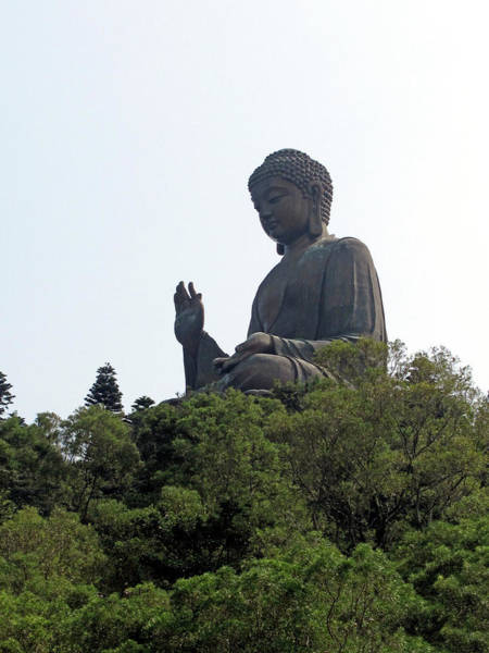 Peace And Harmony Wall Art - Photograph - The Big Buddha Statue In The Po Lin by Cait