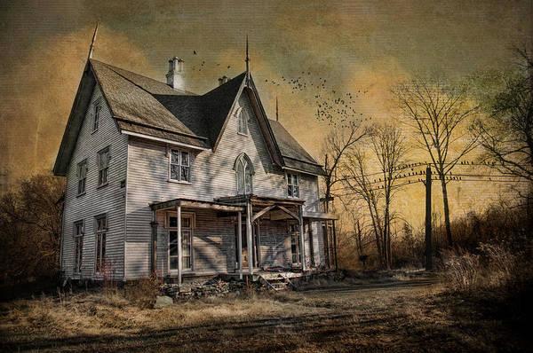 Photograph - The Bird House by Robin-Lee Vieira
