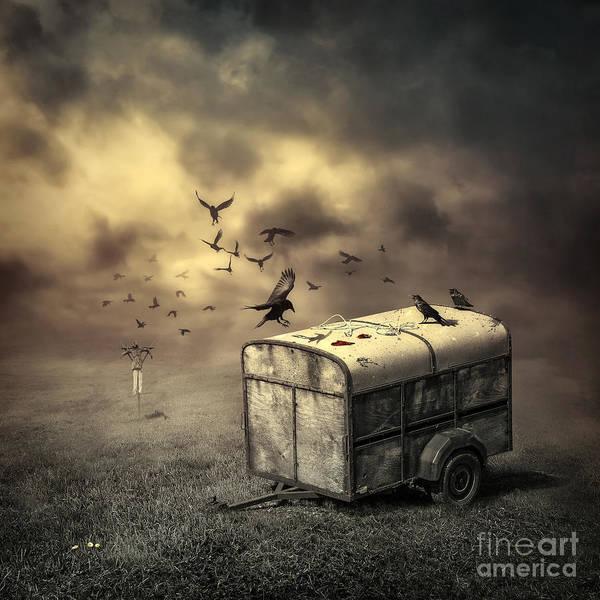 Grime Digital Art - The Bird Table by Svetlana Sewell