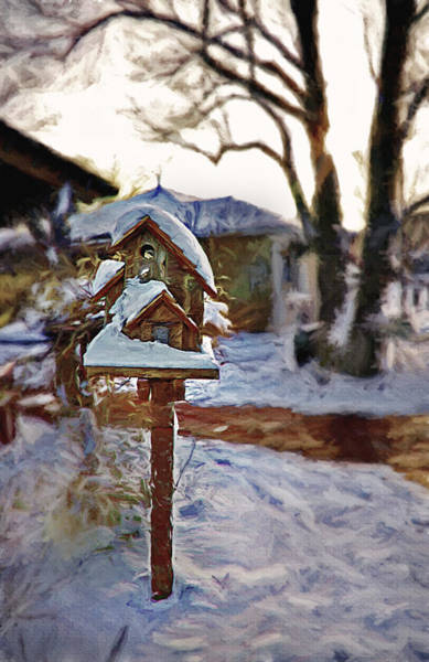 Christmas Season Wall Art - Photograph - The Birdhouse - Rural Still Life by Steve Ohlsen