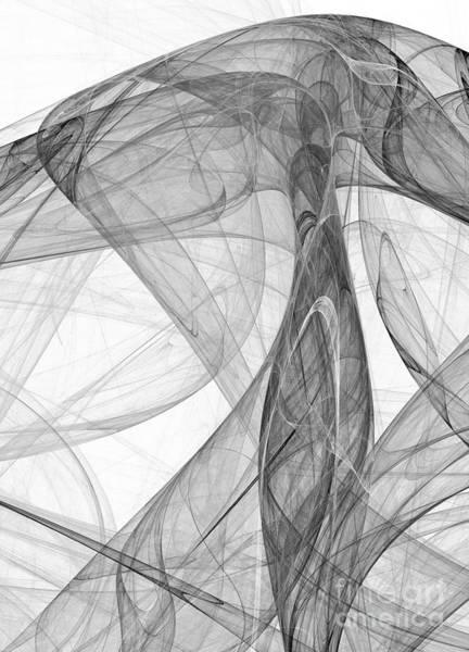 Digital Art - The Black And White Nest by Odon Czintos
