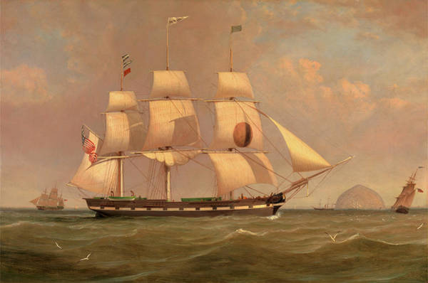 Wall Art - Painting - The Black Ball Line Packet Ship New York Off Ailsa Craig by Litz Collection