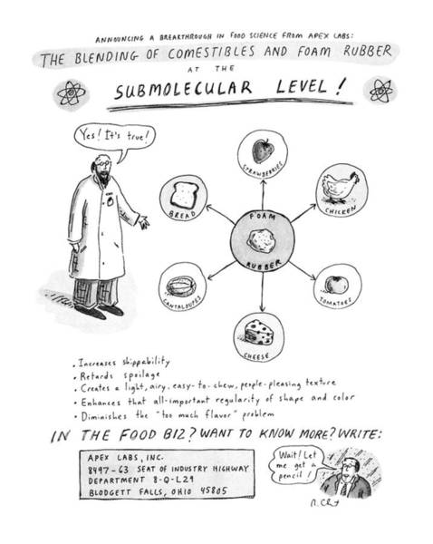 Scientist Drawing - The Blending Of Comestibles And Foam Rubber by Roz Chast