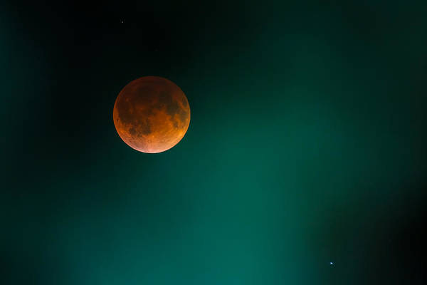 Photograph - The Blood Moon by Ryan Heffron