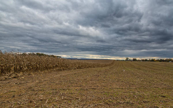 Photograph - The Bloody Cornfield by John M Bailey