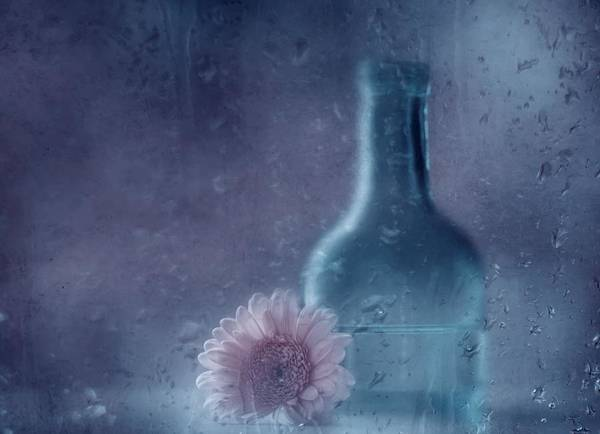 Vases Photograph - The Blue Bottle by Delphine Devos