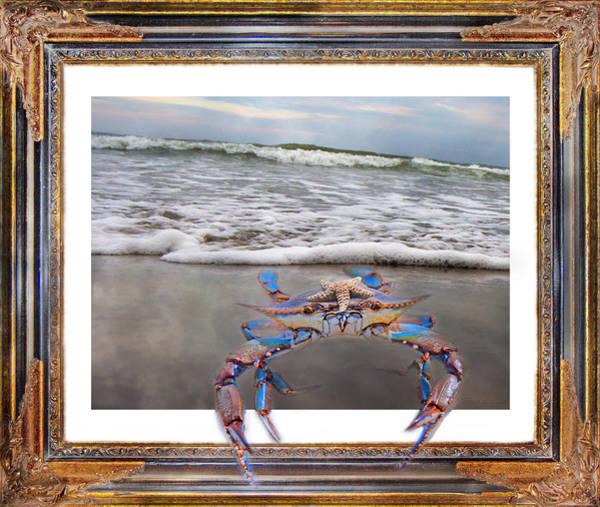 Wall Art - Digital Art - The Blue Crab by Betsy Knapp