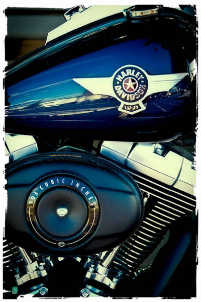 Photograph - The Blue Hog II by David Patterson