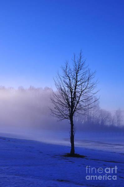 Photograph - The Blue Hour by Randi Grace Nilsberg