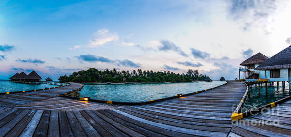 Photograph - The Boardwalk by Hannes Cmarits