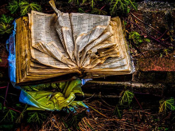 Photograph - The Book by Louis Dallara