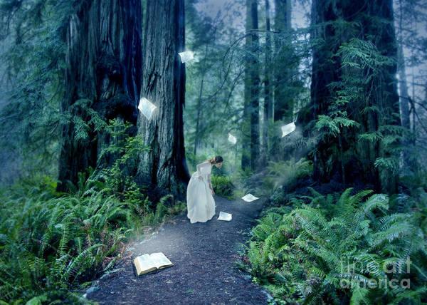 Wall Art - Photograph - The Book To Light Her Path by Jill Battaglia