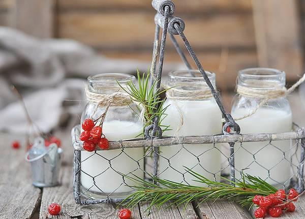 Bottle Photograph - The Bottle Of Milk by Zoryana Ivchenko