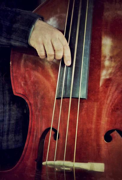 Bass Player Wall Art - Photograph - The Bottom Line by Odd Jeppesen
