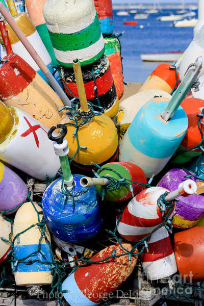 Photograph - The Bouys Are Back In Town by George DeLisle