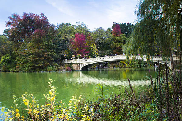 Wall Art - Photograph - The Bow Bridge In Central Park In Autumn Colors by Ellie Teramoto