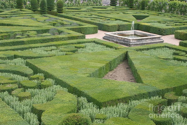 Villandry Photograph - The Boxwood Garden At Chateau Villandry by Christiane Schulze Art And Photography