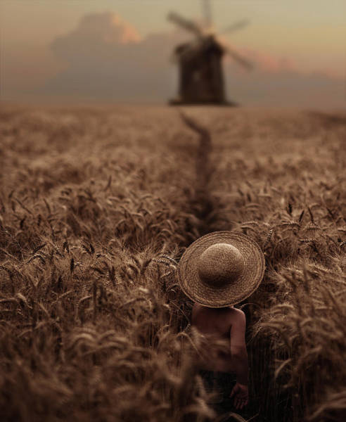 Mills Photograph - The Boy In The Field by David Dubnitskiy