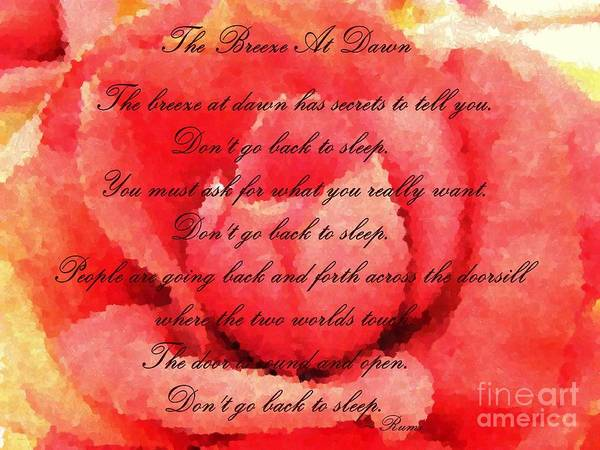 Back Door Painting - The Breeze At Dawn - Rose - Rumi Quote - Don't Go Back To Sleep by Barbara Griffin