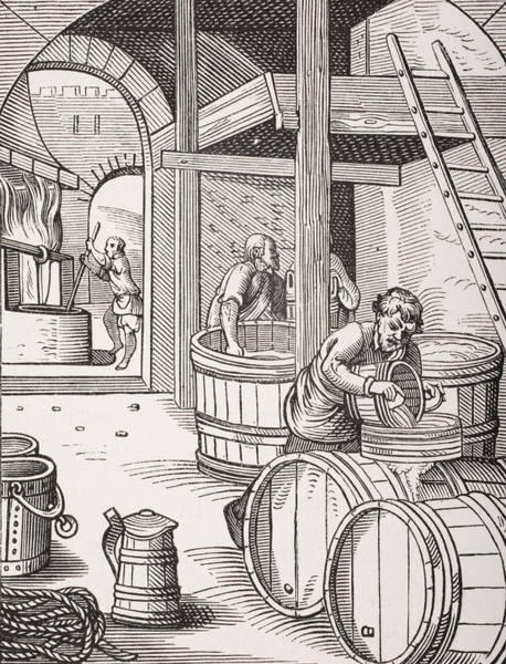 Renaissance Drawing - The Brewer by French School