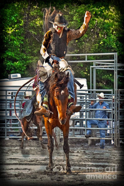 Mission Viejo Photograph - The Bronco Rider by Gary Keesler
