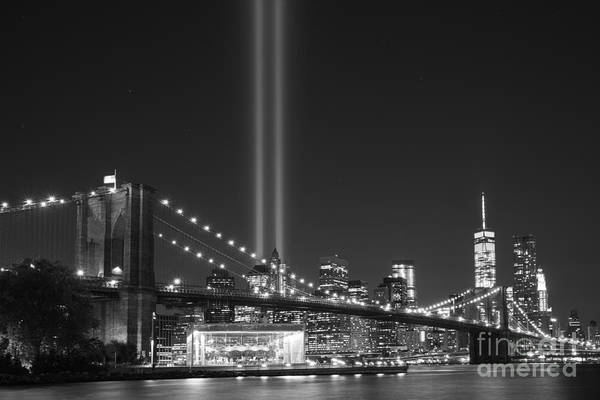 Liberty Bridge Photograph - The Brooklyn Bridge Bnw by Michael Ver Sprill