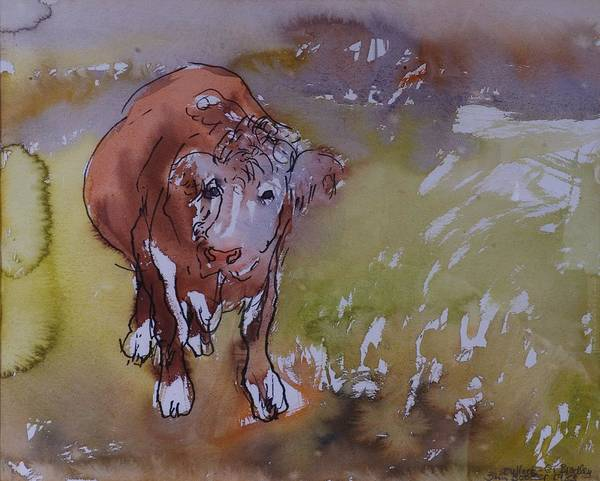 Farm Animals Photograph - The Bullock, 1983 Pen & Ink With Wc On Paper by Brenda Brin Booker