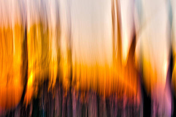 Camera Raw Photograph - The Burn by Steve Belovarich