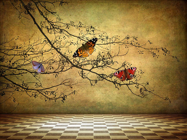 Digital Art - The Butterfly Room by Jessica Jenney