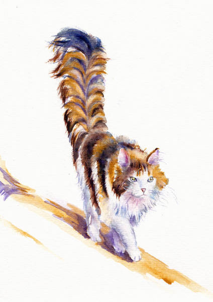 Wall Art - Painting - The Calico Cat That Walked By Himself by Debra Hall