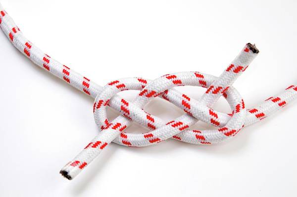 Knot Photograph - The Carrick Bend by Photostock-israel/science Photo Library