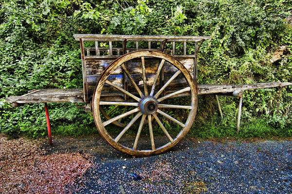 Photograph - The Cart by Mauro Celotti