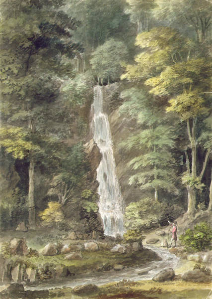 Woodland Drawing - The Cascade Waterfall At Hestercombe by English School