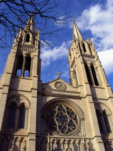 Photograph - The Cathedral Basilica Of The Immaculate Conception 1 by Angelina Tamez