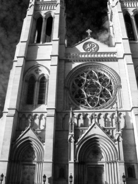 Photograph - The Cathedral Basilica Of The Immaculate Conception 3 Bw by Angelina Tamez