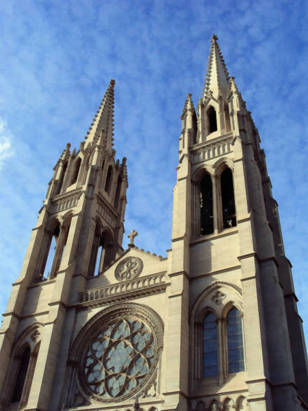 Photograph - The Cathedral Basilica Of The Immaculate Conception 4 by Angelina Tamez