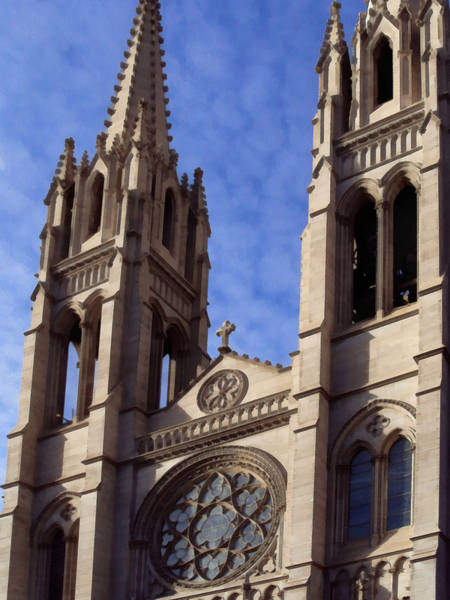 Photograph - The Cathedral Basilica Of The Immaculate Conception 5 by Angelina Tamez