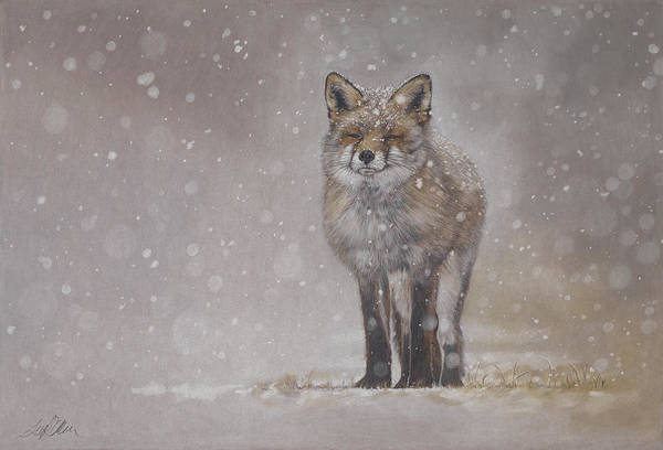 Painting - The Chill Of Winter by Terry Kirkland Cook