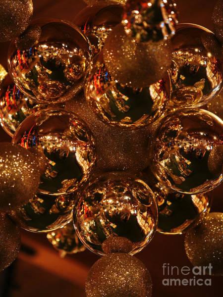 Photograph - The Christmas Gift by Linda Shafer