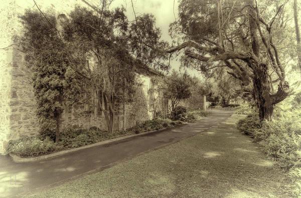 Photograph - The Church Lane by Elaine Teague