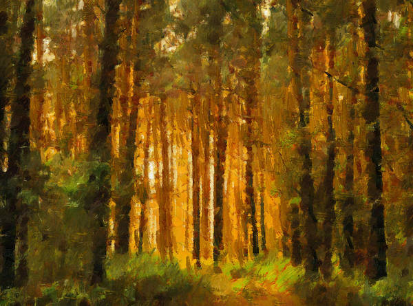Painting - The Clearing by Isabella Howard